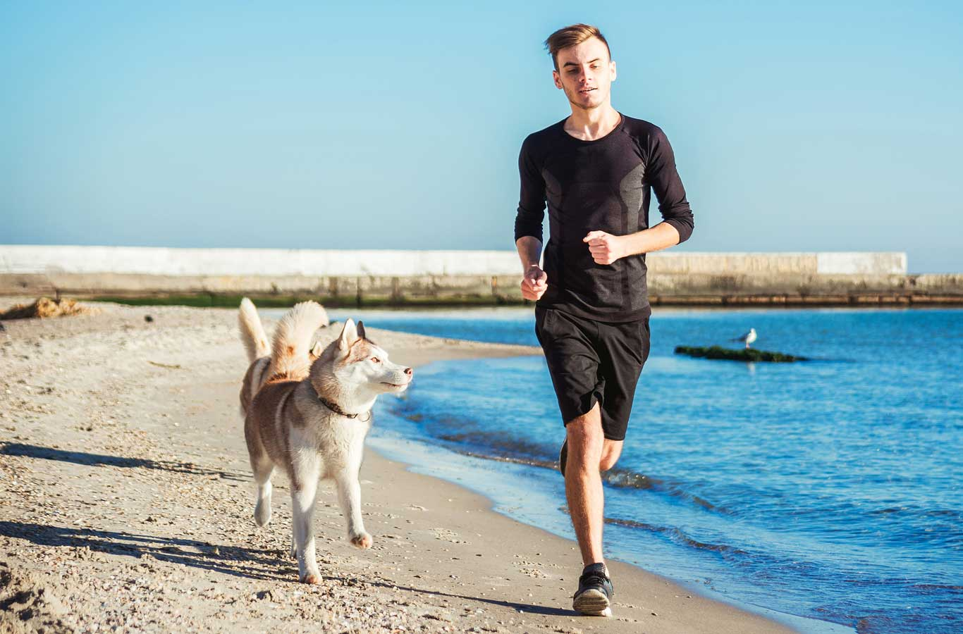 Man running with a dog on a beach