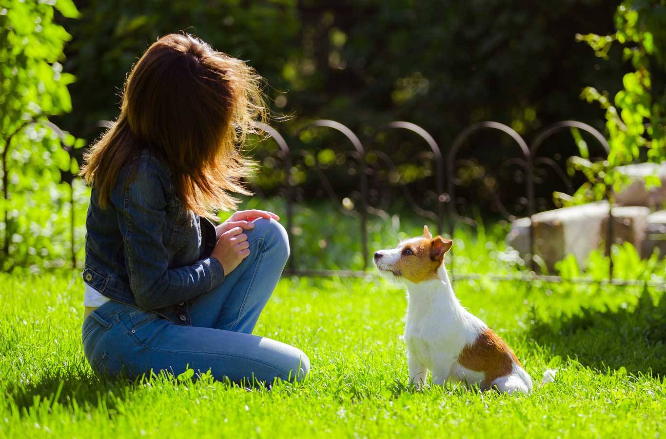 A woman trains her dog in a grassy yard