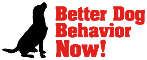 Better Dog Behavior Now, Richmond, VA